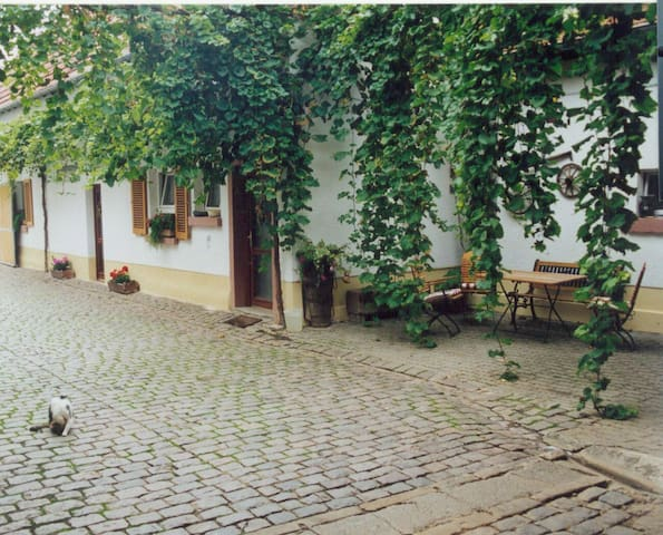 Winzerhof Fewo II - Essingen - Apartament
