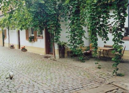 Winzerhof Fewo II - Essingen - Departamento