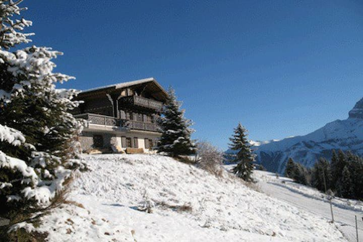 Cosy chalet with stunning view. - Val d'Illiez - Chalé