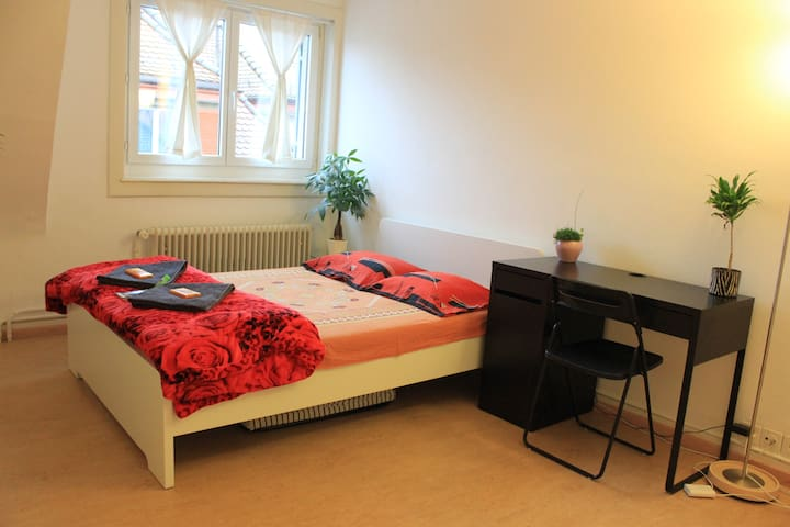Bright, furnished double room in Zurich - Zürich - Appartement