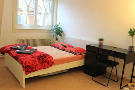 Bright, furnished double room in Zurich - Цюрих