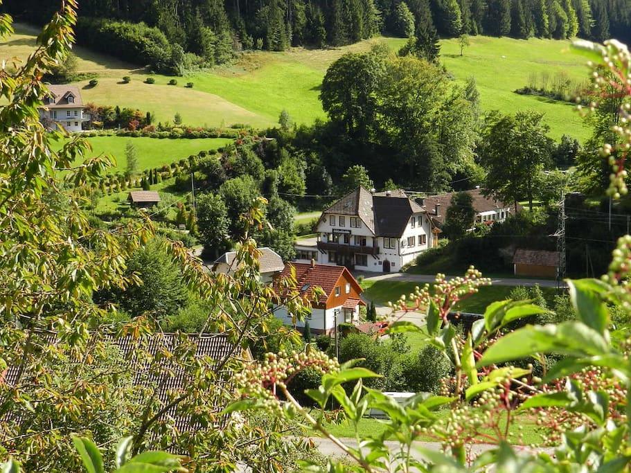 In herrlicher Natur des Schwarzwaldes gelegene Ferienhaus