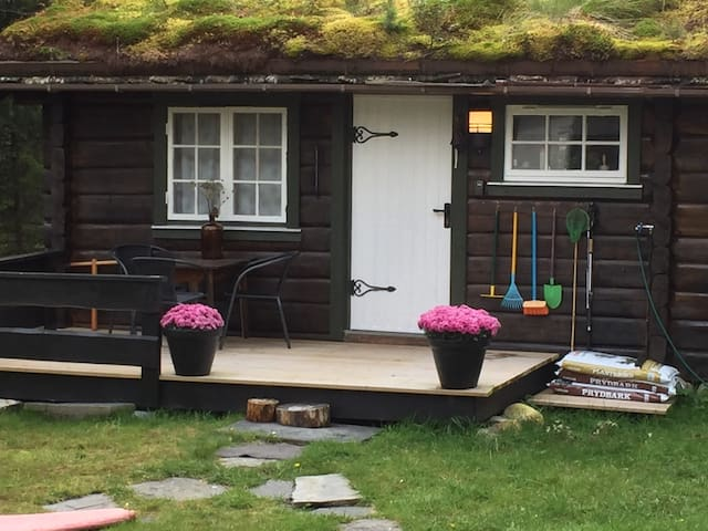 Idyllisk hyttetun ved Ytteråsvatnet.