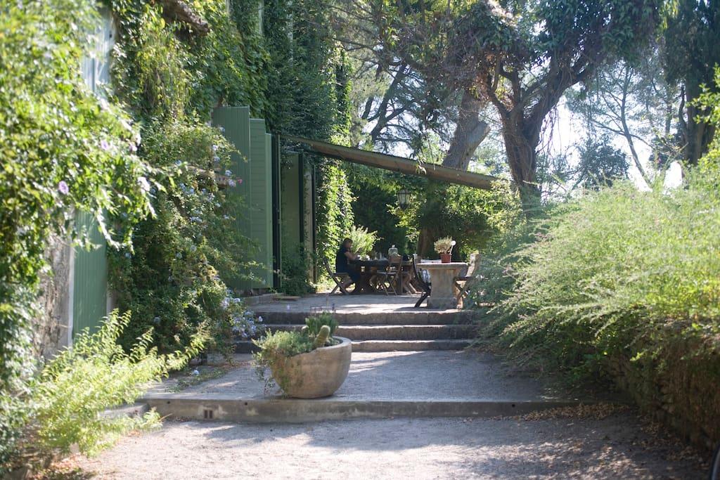 Le côté sud du mas avec la terrasse et la tonelle. / South side of the house with the arbor.