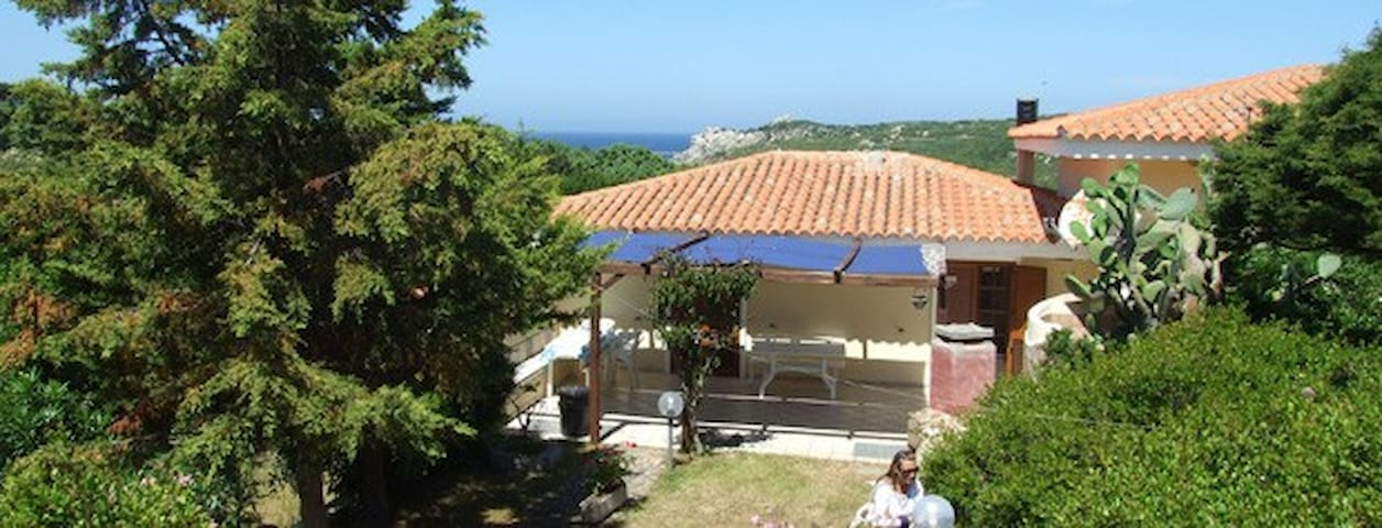Sardinia lovely villa 300 meters from the beaches - Lu Pultiddolu I - House