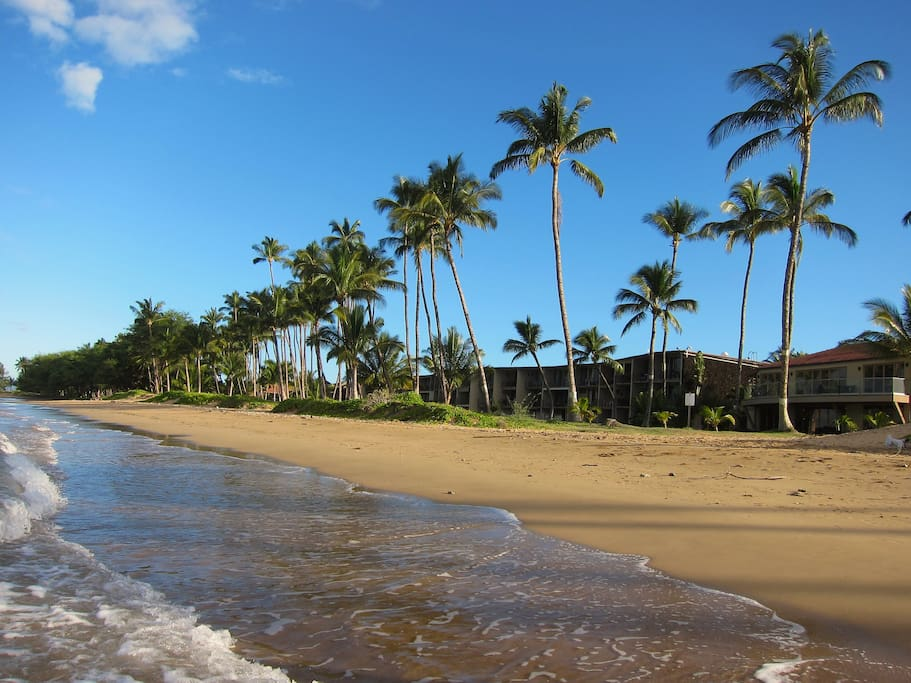 The uncrowded beach out front Hale Kai O' Kihei