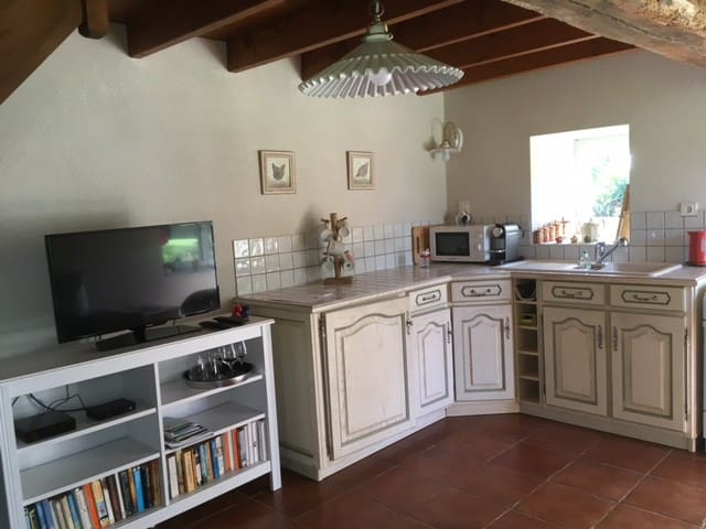 40 m2 appartment - DOGS Welcome - LA CHAPELLE LAUNAY  - Casa