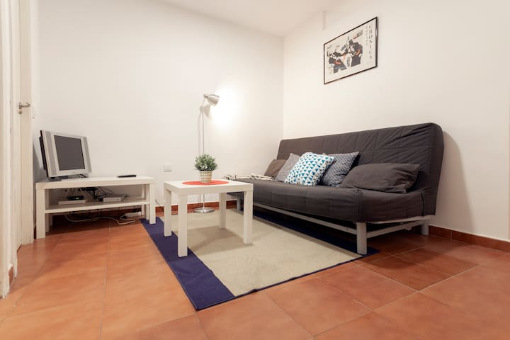 Central apartment in Lavapiés
