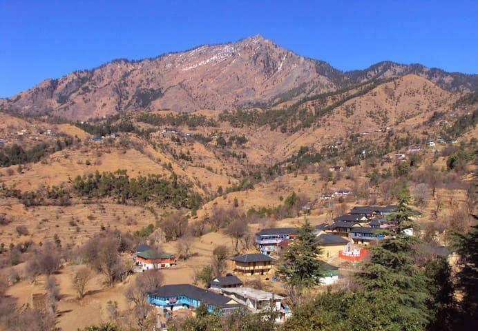 Shali Heights, A Himalayan Homestay