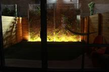 Nighttime shot of the backyard