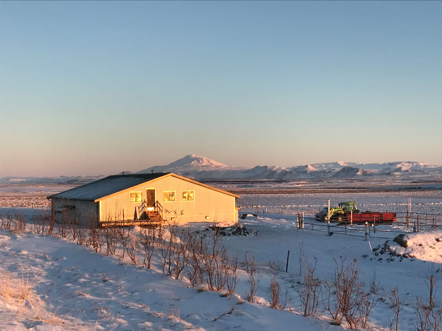 Stables in Kaldakinn, with volcano Hekla in the background. The Guesthouse is very close, also with wonderful view
