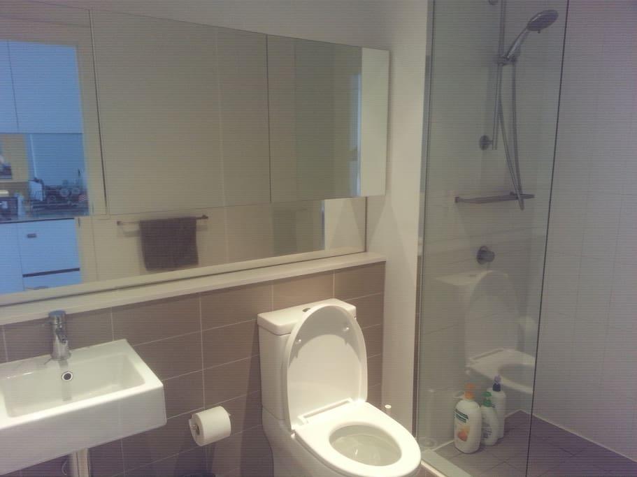 Private modern Bathroom