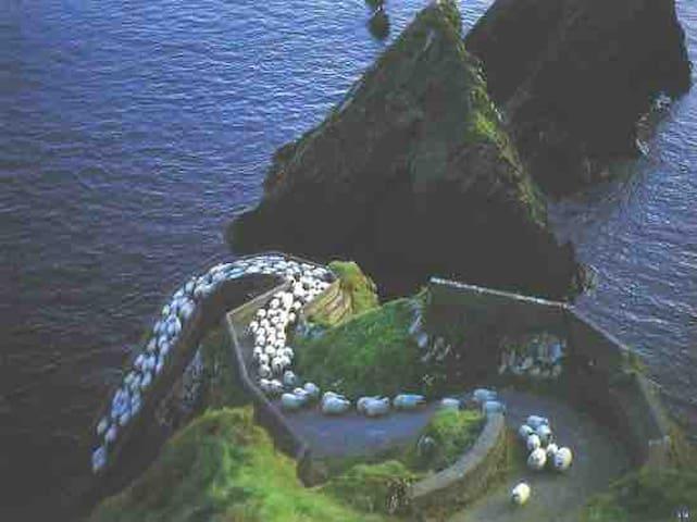 Wild Atlantic Way awaits you!