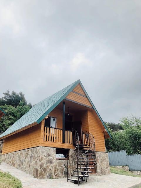 Hut in Surami