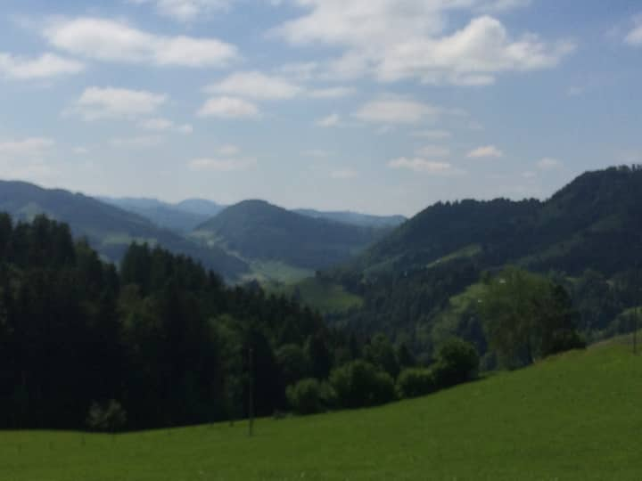 Swiss Farm East end Boden See and Santis Mountain