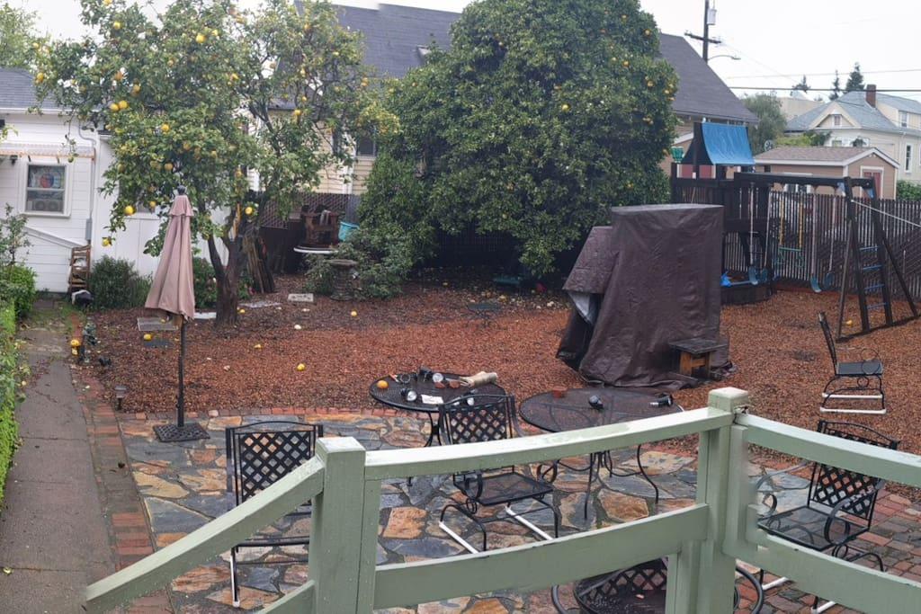 The backyard: patio, climbing structure, sandbox, citrus trees