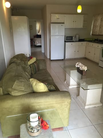 Big open space apartment. Free wifi and cable