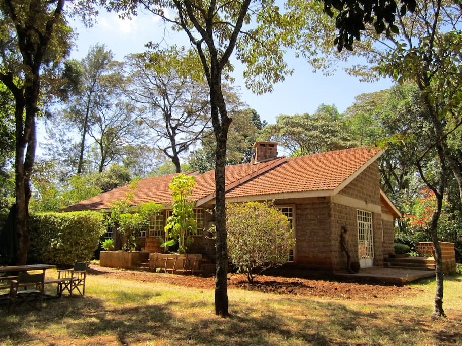 A cozy cottage nestled among the trees. A tranquil location, where you can revel in the sounds of numerous bird species