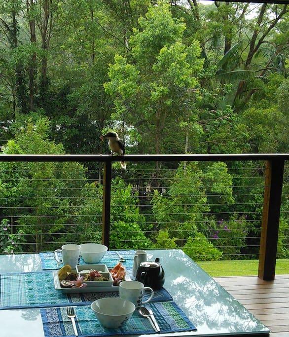Enjoy a healthy delicious breakfast with the kookaburra.