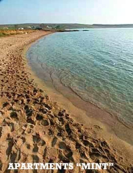 Natural sandy beach