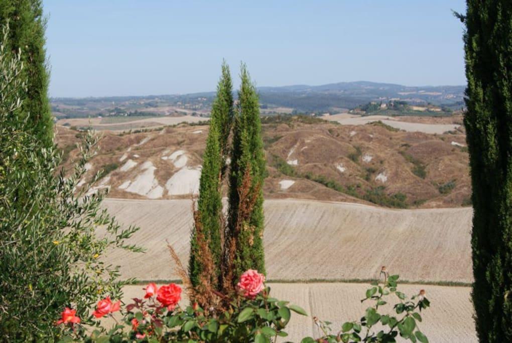 Crete Senesi view with garden's details