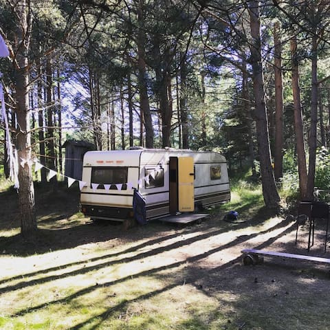 Fairytale place to relax Liblabi (Camper number 1)