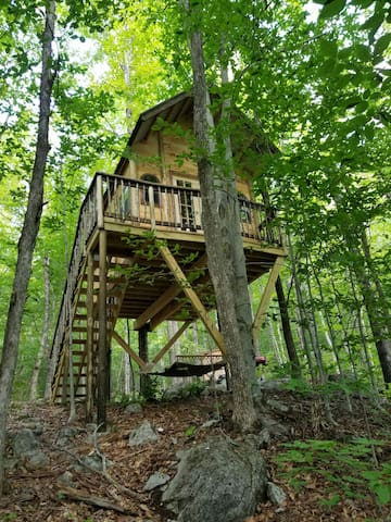 Treehouse Rentals & Disc Golf Course - The Birdie
