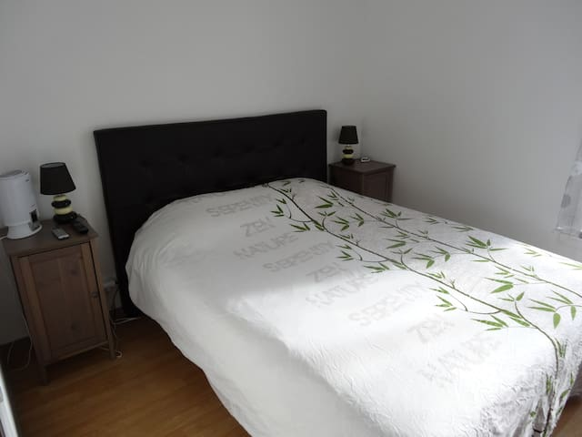 Nice room with king size bed - Serris - Apartment