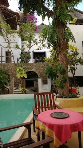 The shaded green garden with the pool under the mangotree.