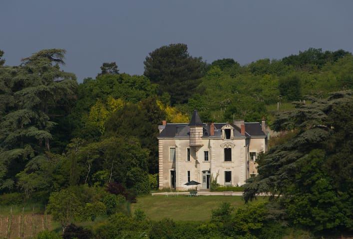 Manor house on an organic vineyard