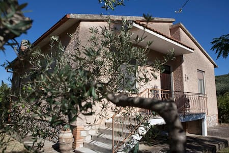 Family homestead in the olive grove - Grosseto