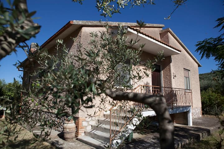 Family homestead in the olive grove
