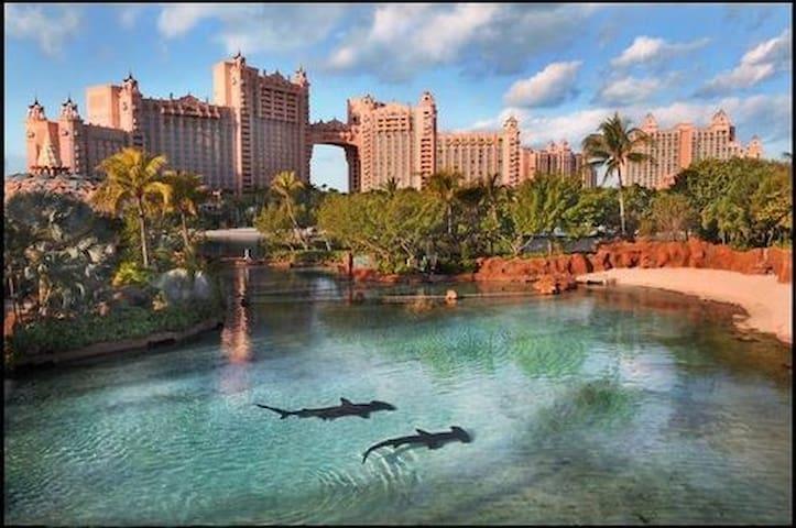 Affordable + Near Atlantis & All! - Paradise island - Huoneisto