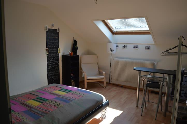 Jolie chambre lumineuse entre nature et culture - La Chaux-de-Fonds - Apartment
