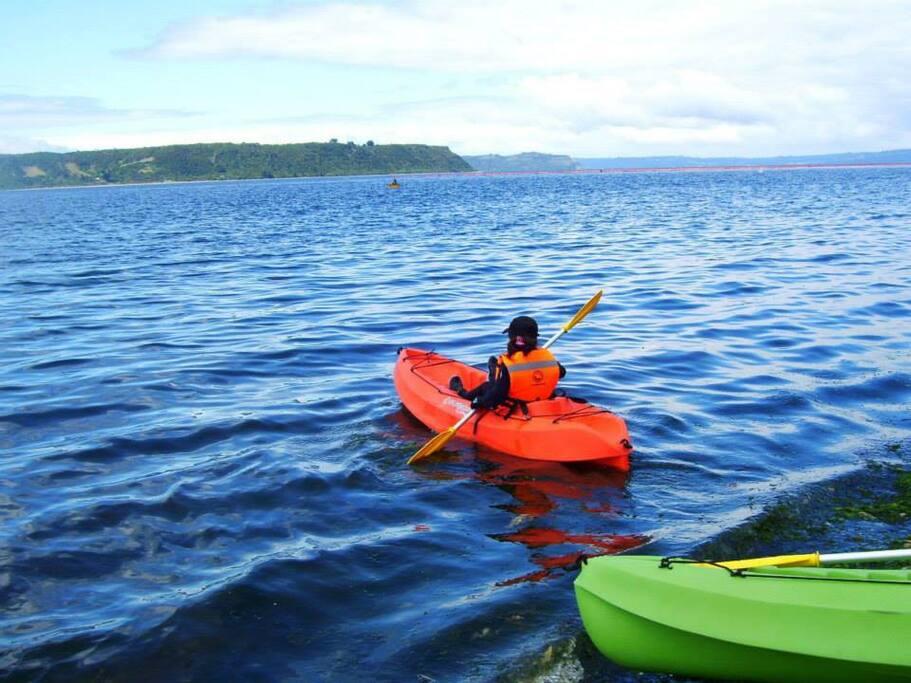 Puedes disfrutar paseos en kayaks./You can enjoy kayaking.