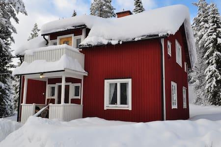 Skiing, fishing, wildlife, cosiness - Särna