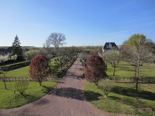 Villa Roffa, A room with art... - Chouzy-sur-Cisse - Bed & Breakfast