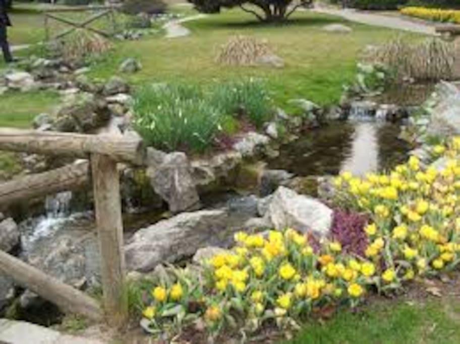 giardino roccioso(parco dl valentino)