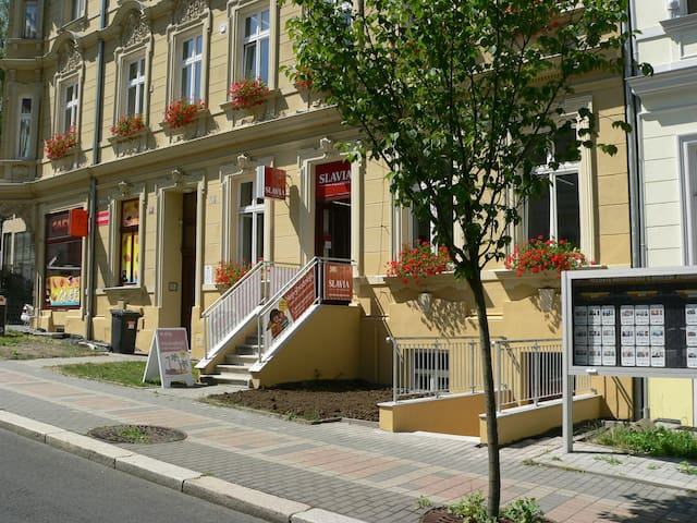 Accomodation in center of town. - Carlsbad - Apartament