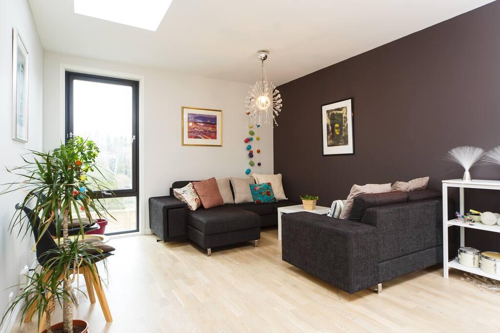 Living room with skylight windows