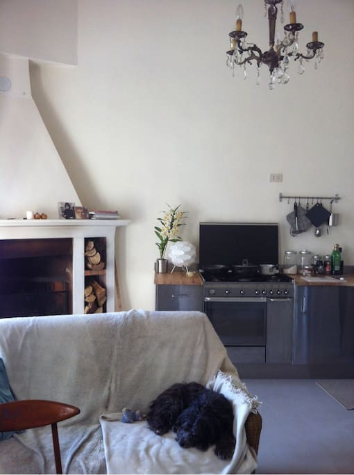 The kitchen with fireplace and our dog