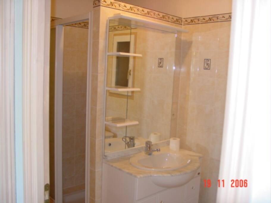 salle-de-bain avec douche à jets, w-c, lavabo