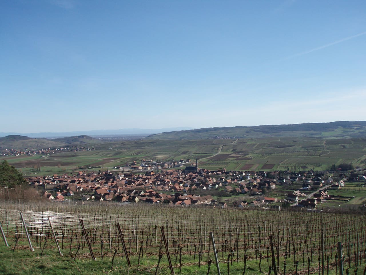 The village is surrounded by vineyards