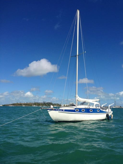 The Amba is waiting for you! Best view and value in Key West! New upgrades to inside cabin! Led lights!