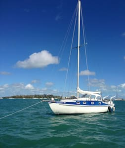 Awesome 35foot sailboat KeyWestAmba - Cayo Hueso - Barco