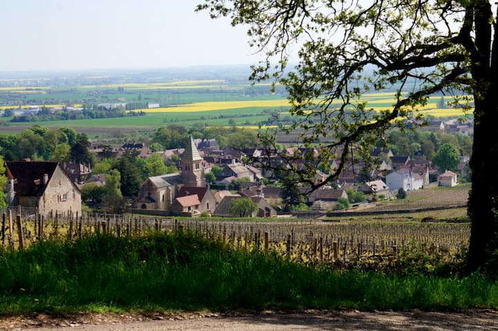 Close Dijon, village on the Wine road