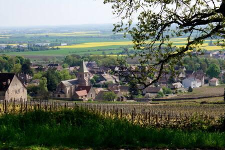 Close Dijon, village on the Wine road