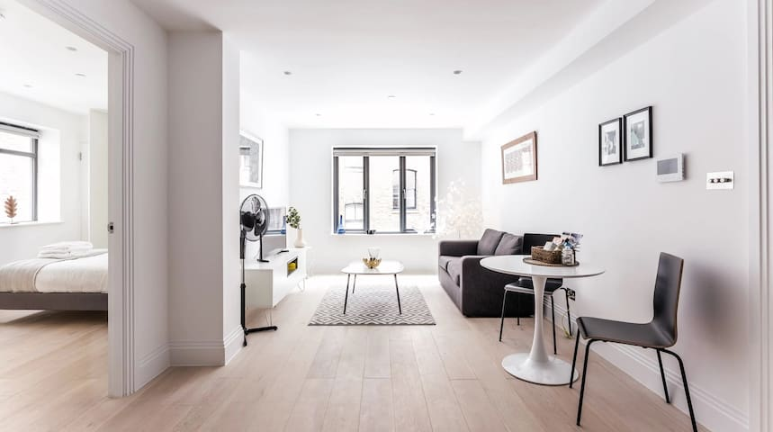 Luxury flat London, Oxford Circus 1-bed 1-bath OC1