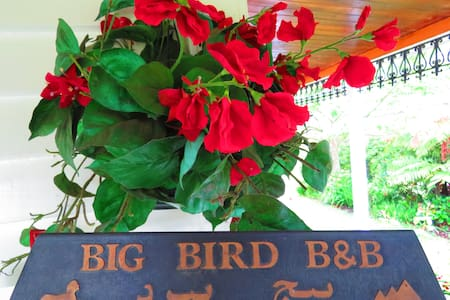 Waitomo Big Bird BB - Queen/Ensuite - Waitomo - Bed & Breakfast