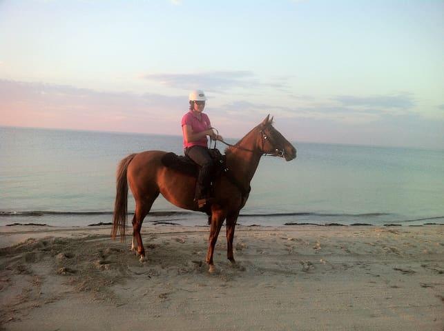"""Jus Restin,"" Pink's Beach"